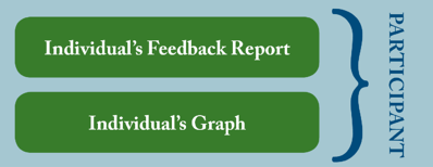 individual feedback report Your 360 degree feedback report – clear and simple 360 degree feedback is a valuable addition to anyone's personal development plan this clear, simple and superb looking a4 formatted pdf document is something your people will be proud to own.